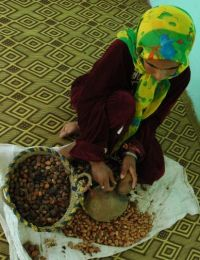 extraction huile argan