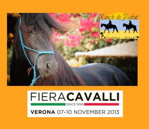 Salon Fieracavalli 2013