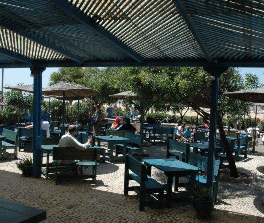 Le Restaurant L'Océan Vagabond à Essaouira Version Terrasse